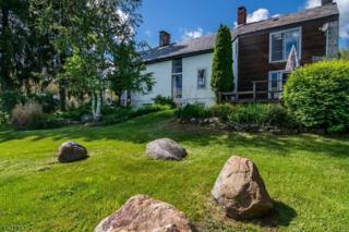 54 Lincoln Laurel Rd, Frelinghuysen Twp., NJ 07860 (MLS #3346901) :: The Dekanski Home Selling Team