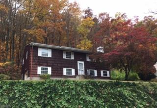 28 Hickory Rd, Ringwood Boro, NJ 07456 (MLS #3347281) :: The Dekanski Home Selling Team