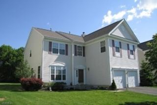 20 Saxton Dr, Hackettstown Town, NJ 07840 (MLS #3347329) :: The Dekanski Home Selling Team