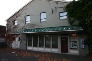 91 Main St Rear 2A, Flemington Boro, NJ 08822 (MLS #3347452) :: The Dekanski Home Selling Team