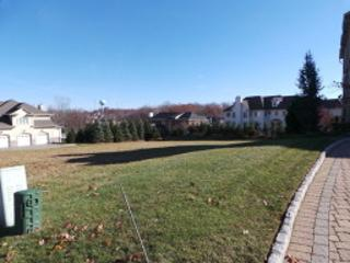 32 Overlook Rd, Livingston Twp., NJ 07039 (MLS #3347453) :: The Dekanski Home Selling Team