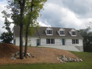 24 Evergreen Trl, Vernon Twp., NJ 07462 (MLS #3347619) :: The Dekanski Home Selling Team