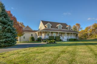 67 Black River Rd, Washington Twp., NJ 07853 (MLS #3348535) :: The Dekanski Home Selling Team