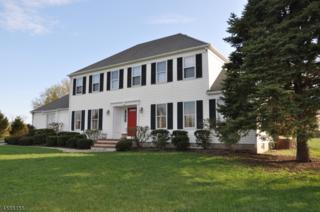 641 Case Rd, Branchburg Twp., NJ 08853 (MLS #3348837) :: The Dekanski Home Selling Team