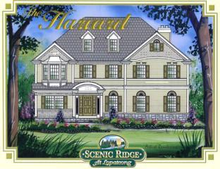00 Mountain View - Harvard, Lopatcong Twp., NJ 08865 (MLS #3349546) :: The Dekanski Home Selling Team