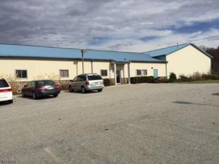7 Park Dr, Hardyston Twp., NJ 07416 (MLS #3349961) :: The Dekanski Home Selling Team