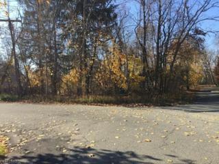 13 Ferro Monte Ave, Roxbury Twp., NJ 07847 (MLS #3349992) :: The Dekanski Home Selling Team