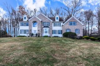 16 Arnold Dr, Randolph Twp., NJ 07869 (MLS #3350534) :: The Dekanski Home Selling Team