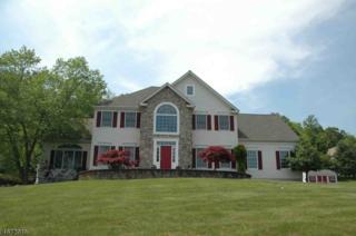 27 Scarlett Oak Road, Raritan Twp., NJ 08822 (MLS #3350570) :: The Dekanski Home Selling Team