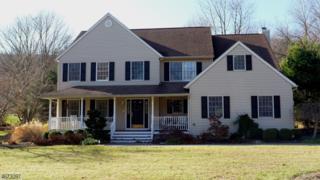 25 Sleepy Hollow Dr, Jefferson Twp., NJ 07438 (MLS #3350676) :: The Dekanski Home Selling Team