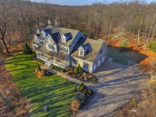 200 Rockburn Pass, West Milford Twp., NJ 07480 (MLS #3350817) :: The Dekanski Home Selling Team