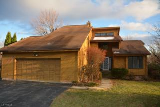 7 Telfer Dr, Vernon Twp., NJ 07418 (MLS #3350967) :: The Dekanski Home Selling Team