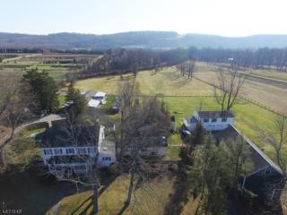 461 W Mill Rd, Washington Twp., NJ 07853 (MLS #3351073) :: The Dekanski Home Selling Team