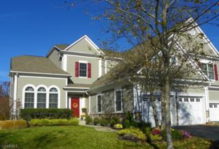 12 Tillou Ct, South Orange Village Twp., NJ 07079 (MLS #3351083) :: The Dekanski Home Selling Team