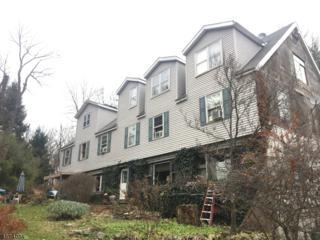 202 County Road 579, Alexandria Twp., NJ 08804 (MLS #3351317) :: The Dekanski Home Selling Team