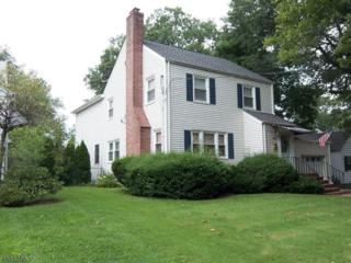 478 Meisel Ave, Springfield Twp., NJ 07081 (MLS #3351969) :: The Dekanski Home Selling Team