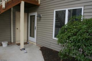 103 Westchester Ter, Clinton Twp., NJ 08801 (MLS #3353427) :: The Dekanski Home Selling Team