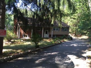 116 Waughaw Rd, Montville Twp., NJ 07082 (MLS #3353570) :: The Dekanski Home Selling Team