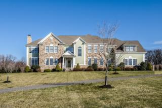 5 Pond View Ln, Alexandria Twp., NJ 08827 (MLS #3353811) :: The Dekanski Home Selling Team