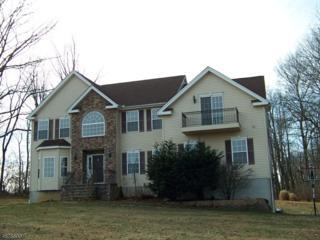 2 Halls Mill Rd, Franklin Twp., NJ 08802 (MLS #3354013) :: The Dekanski Home Selling Team