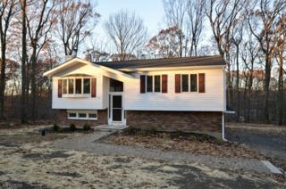21 Kern Dr, Mount Olive Twp., NJ 07836 (MLS #3354054) :: The Dekanski Home Selling Team