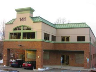 141 141 US-46, Rockaway Boro, NJ 07866 (MLS #3354252) :: The Dekanski Home Selling Team