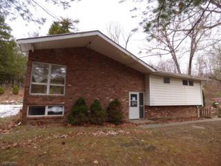 5225 Berkshire Valley Rd, Jefferson Twp., NJ 07438 (MLS #3354330) :: The Dekanski Home Selling Team