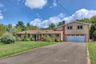 105 Lehman Ln, Branchburg Twp., NJ 08853 (MLS #3354737) :: The Dekanski Home Selling Team
