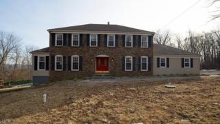 169 Naughright Rd, Washington Twp., NJ 07853 (MLS #3355034) :: The Dekanski Home Selling Team