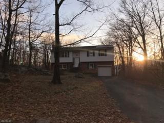 20 Elm Tree Rd, Vernon Twp., NJ 07422 (MLS #3355125) :: The Dekanski Home Selling Team