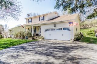 9 Hoffman Rd, High Bridge Boro, NJ 08829 (MLS #3355320) :: The Dekanski Home Selling Team