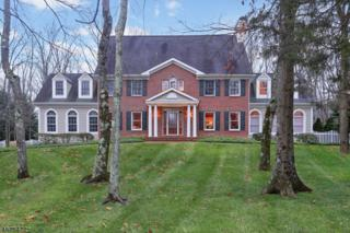 65 Viburnum Dr, Montgomery Twp., NJ 08558 (MLS #3355347) :: The Dekanski Home Selling Team