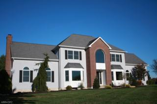 107 Stone Crossing, Greenwich Twp., NJ 08886 (MLS #3355497) :: The Dekanski Home Selling Team