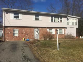 53 Birch Ave, West Milford Twp., NJ 07480 (MLS #3355582) :: The Dekanski Home Selling Team