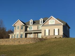 6 Thames Ln, Raritan Twp., NJ 08822 (MLS #3355644) :: The Dekanski Home Selling Team