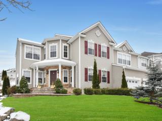 166 Tanglewood Pass, Jefferson Twp., NJ 07849 (MLS #3355735) :: The Dekanski Home Selling Team