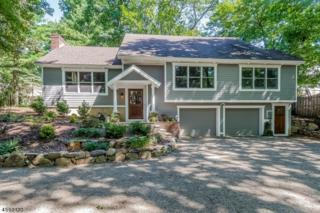 13 Primrose Trl, Harding Twp., NJ 07960 (MLS #3355826) :: The Dekanski Home Selling Team
