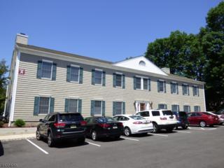 1124 Route 202 South, Raritan Boro, NJ 08869 (MLS #3355869) :: The Dekanski Home Selling Team