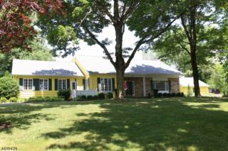 1578 Long Hill Rd, Long Hill Twp., NJ 07946 (MLS #3356022) :: The Dekanski Home Selling Team