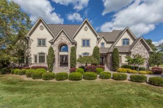 1 Kristina Way, Raritan Twp., NJ 08822 (MLS #3356081) :: The Dekanski Home Selling Team