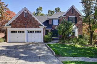 24 Apple Tree Ln, Warren Twp., NJ 07059 (MLS #3356104) :: The Dekanski Home Selling Team