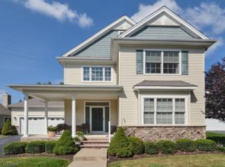 12 Peregrine Dr, Washington Twp., NJ 07882 (MLS #3356189) :: The Dekanski Home Selling Team