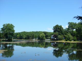 135 Lake Dr, Byram Twp., NJ 07874 (MLS #3356295) :: The Dekanski Home Selling Team