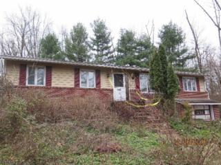 235 Mountain Rd, East Amwell Twp., NJ 08551 (MLS #3356347) :: The Dekanski Home Selling Team