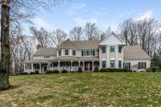 25 Country Oaks Road, Clinton Twp., NJ 08833 (MLS #3356502) :: The Dekanski Home Selling Team