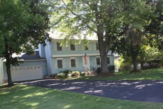59 Pinkneyville Rd, Sparta Twp., NJ 07871 (MLS #3356537) :: The Dekanski Home Selling Team