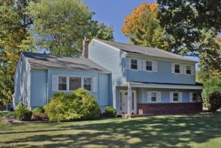 36 Buckingham Cir, Montville Twp., NJ 07045 (MLS #3356719) :: The Dekanski Home Selling Team
