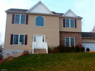 3 Heather Hill Rd, Washington Boro, NJ 07882 (MLS #3357003) :: The Dekanski Home Selling Team