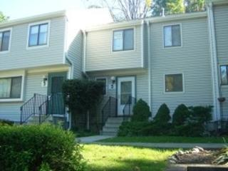 5 Fox Tail Ln, Hardyston Twp., NJ 07419 (MLS #3357073) :: The Dekanski Home Selling Team