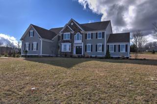 5 Partridge Run, Raritan Twp., NJ 08822 (MLS #3357216) :: The Dekanski Home Selling Team